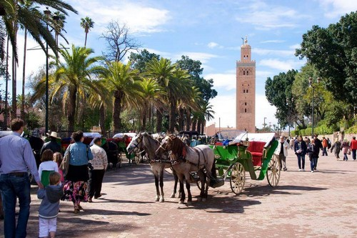 Marrakech Excursion Agadir Discovery